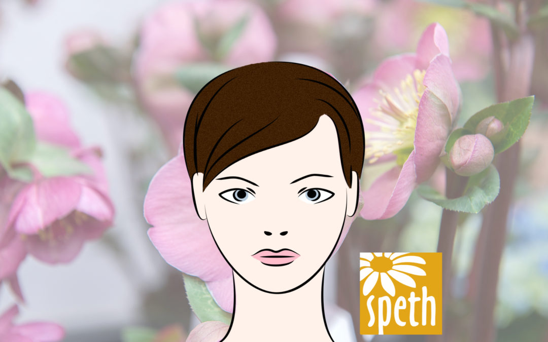 Floristin Vollzeit/Teilzeit