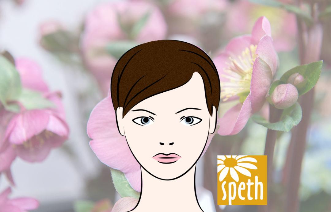 Avatar Florist Gaertner