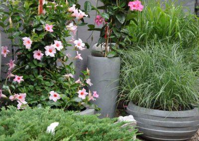 Blumen Speth Gartenausstellung19