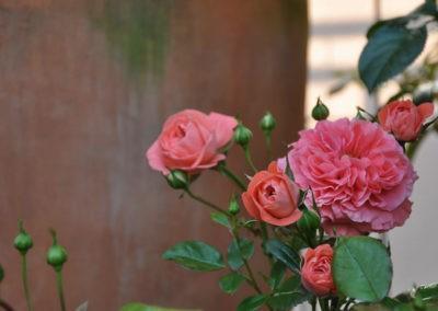 Blumen Speth Gartenausstellung2