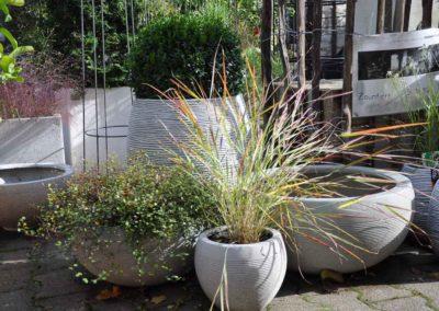 Blumen Speth Gartenausstellung24
