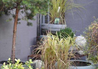 Blumen Speth Gartenausstellung25