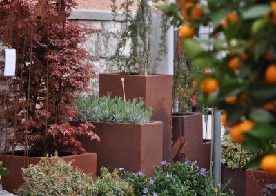 Blumen Speth Gartenausstellung8