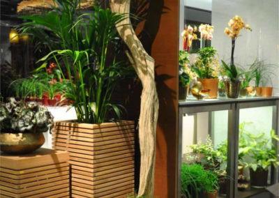 Blumen Speth Pflanzen Accessoires