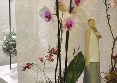 Orchidee Weihnachtlich