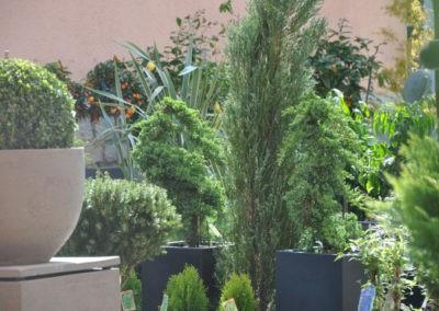 Speth Gartenausstellung12