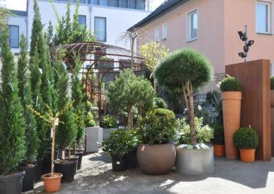 Speth Gartenausstellung2