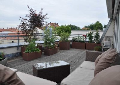 Terrassen Begruenung15
