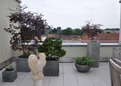 Terrassen Begruenung24