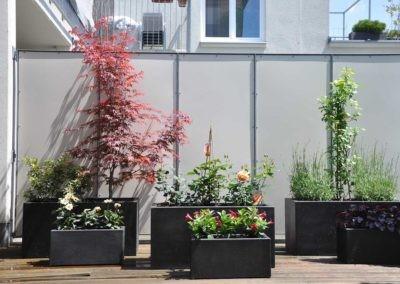 Terrassen Begruenung35